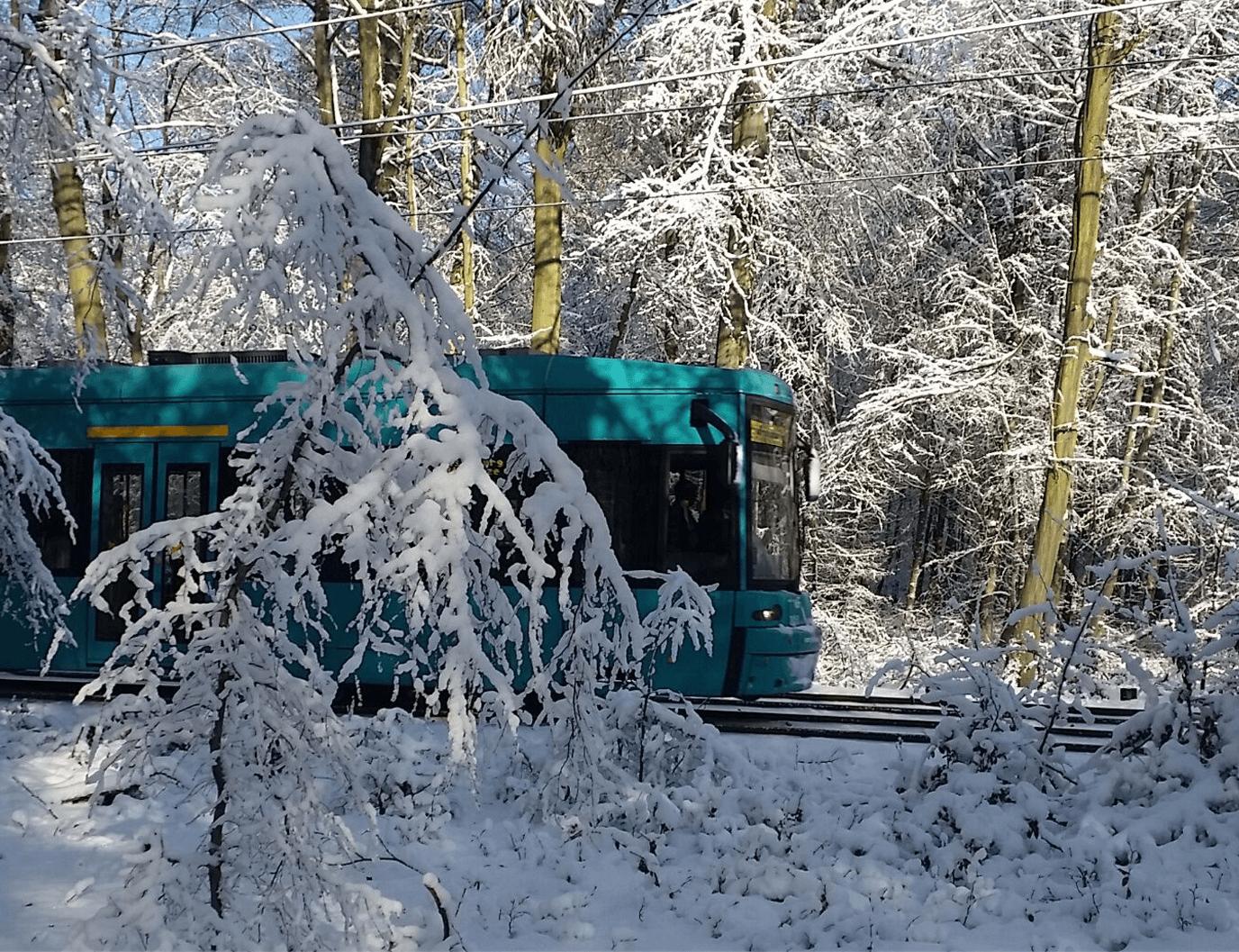 Bahn fährt durch einen beschneiten Wald