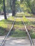Alte Schienen in begrünter Umgebung