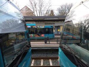 Tram und U-Bahn Haltestelle Ginnheim